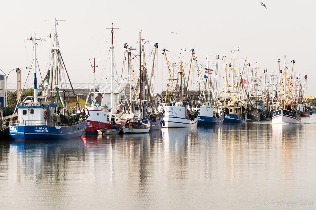 Fangflotte in Büsum